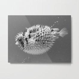 Black & white puffer Metal Print