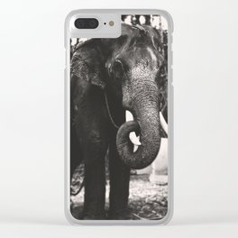 Elephant Love Clear iPhone Case