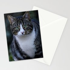 Green eyes cat Stationery Cards