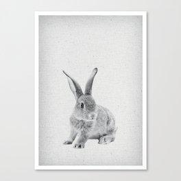 Rabbit 25 Canvas Print