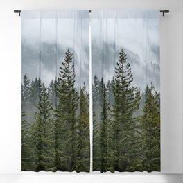 Forest Fog IV - 90/365 Blackout Curtain