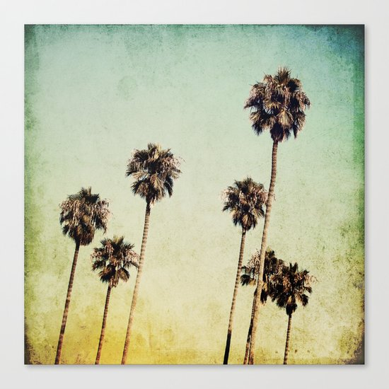 Palm Trees 2 Canvas Print