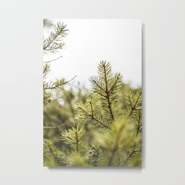 Into the Pines Metal Print