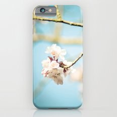 Cherry Blossom, Pink Flowers and Blue Sky. iPhone 6s Slim Case