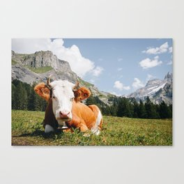 Photo of Chill Mountain Cow II, in Kandersteg, Suisse/Switzerland Alps | Fine Art Travel Photography |  Canvas Print