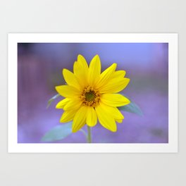 Sunflower II Art Print