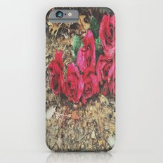 Red Roses iPhone 6s Slim Case