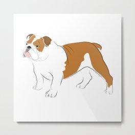 British Bulldog Metal Print