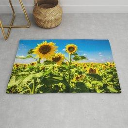 Three's Company - Trio of Sunflowers in Kansas Rug