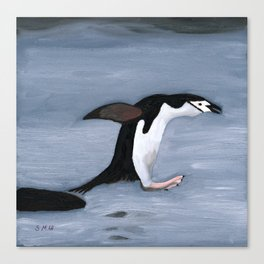 Chin Strap Penguin Taking the Plunge Canvas Print