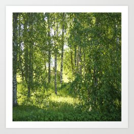 Beautiful Morning Summer Greenery #decor #society6 #buyart Art Print