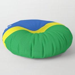 Flag of Flevoland Floor Pillow