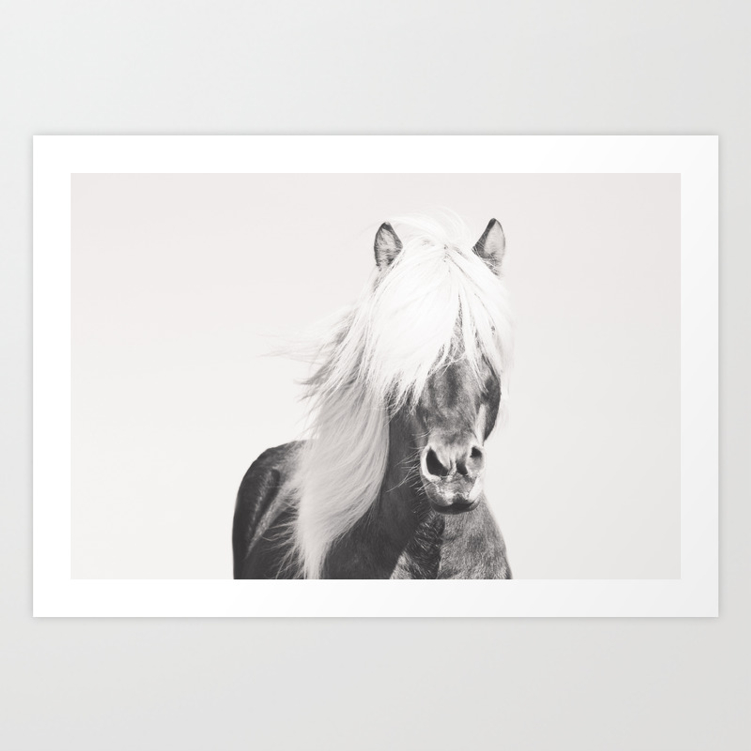 Bw Horse Horse Art Black And White Nordic Horse Horse Print Boho Decor Horse Photo Art Print By Northernedge Society6