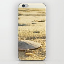 Sunrise Sand Dollar iPhone Skin