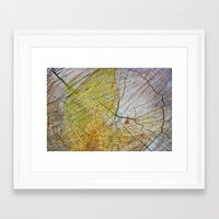 tree rings Framed Art Prints featuring Tree rings by Nuria Talavera