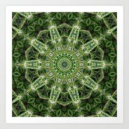 Spider Plant Kaleidoscope Art 4 Art Print