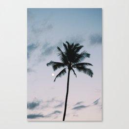 palm + moon Canvas Print
