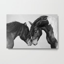 Horses - Black & White 4 Metal Print