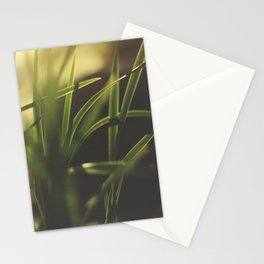 The Details in Grass Stationery Cards