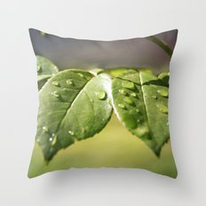 Fresh Dew Drops Throw Pillow