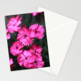 Pink Dianthus with Raindrops 2 Stationery Cards