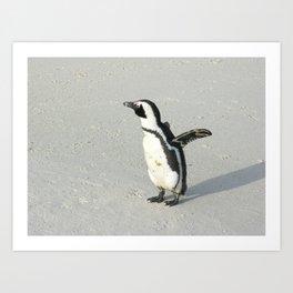 Cute Penguin Boulders Beach, Cape Town, South Africa Art Print