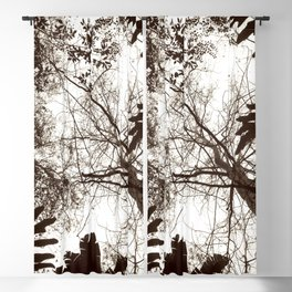Memories of Endor 1 (B&W) Blackout Curtain