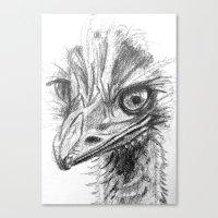 ostrich Canvas Prints featuring Ostrich  by Juliette Caron