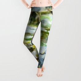 Seaweed Series 4 Leggings