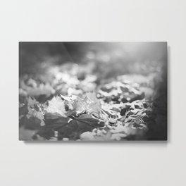 Autumn Leafs (Black and White) Metal Print