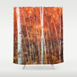 Birch Grove Shower Curtain