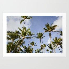 Palmy Blue. Art Print