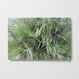 Plethora Of Palm Fronds Abstract Photography Metal Print