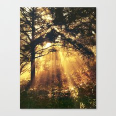 Maybe a dream Canvas Print