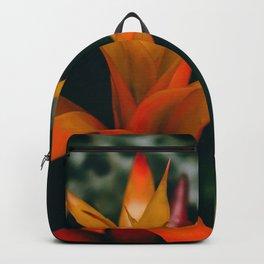 Tropical Bromeliad Backpack