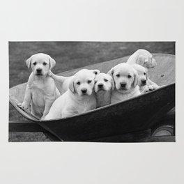 Labs Puppies In A Wheelbarrow Rug
