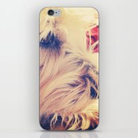 westie iPhone & iPod Skins featuring westie love by simple art