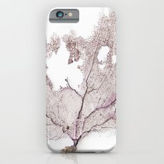 CORAL FAN iPhone 6s Slim Case