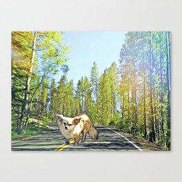 Stewie in the Forest Canvas Print