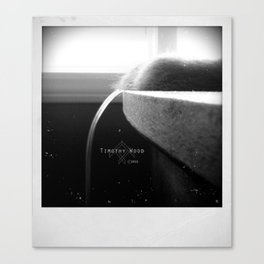 An Old Look for Something New Canvas Print