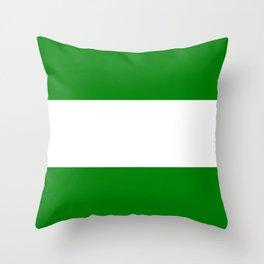 flag of rotterdam Throw Pillow