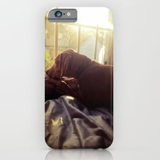 Sitting by the Evening Sun iPhone 6s Slim Case