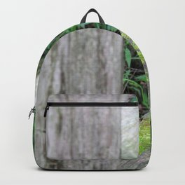 Mossy Fence Backpack