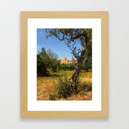 Italy, olive trees and an ancient abbey Framed Art Print