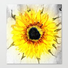 Sunflower from Water Canvas Print