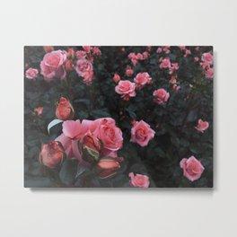 Tina pink Metal Print