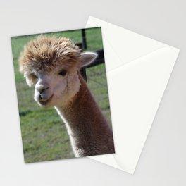 Cordial Alpacas Lara-Belle Stationery Cards
