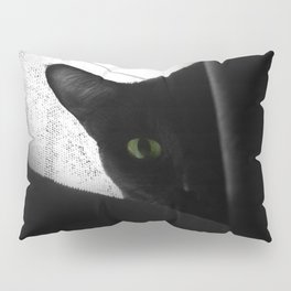Loko's Dark Intentions: Secretly Plotting Your Demise Pillow Sham