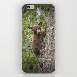 Black Bear Cub Hanging On iPhone Skin