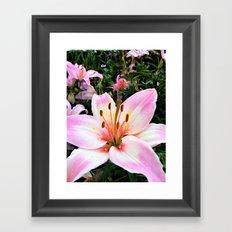 Lilyia Framed Art Print